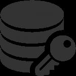 Data-Data-encryption-icon